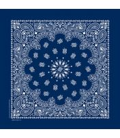 Traditional Paisley Bandana