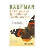 Field Guide To Butterflies of North America Kaufman