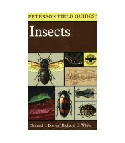 Field Guide To Insects Peterson