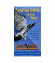 Getgo Guide To Soaring Birds