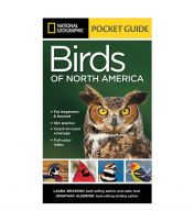 Pocket Guide to the Birds of North America