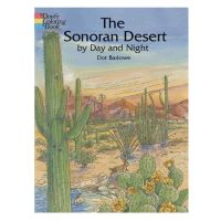 Sonoran Desert By Day and Night Coloring Book