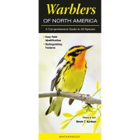 Warblers of North America: a Comprehensive Guide To All Species