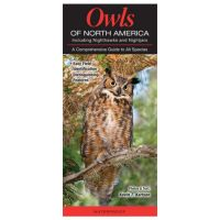 Owls Of North America: Including Nighthawks And Nightjars: A Comprehensive Guide To All Species