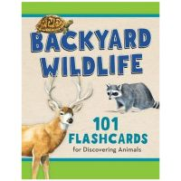 Backyard Wildlife: 101 Flashcards For Discovering Animals