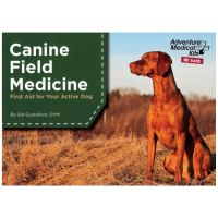 Canine Field Medicing: First Aid For Your Active Dog