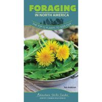 Adventure Skills Guide: Foraging In North America: The Top 14 Plants To Seek Out