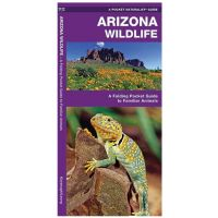 Arizona Wildlife: A Folding Pocket Guide To Familiar Species