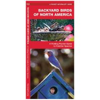 Pocket Naturalist Guide: Backyard Birds Of North America: A Folding Pocket Guide To Familiar Species