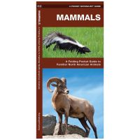 Mammals: A Folding Pocket Guide To Familiar North American Animals