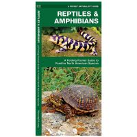 Reptiles & Amphibians: A Folding Pocket Guide To Familiar North American Species