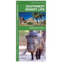 Southwestern Desert Life: A Folding Pocket Guide To Familiar Plants & Animals