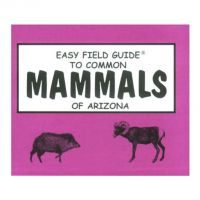 Easy Field Guide to Mammals of Arizona