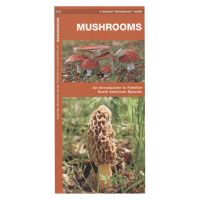 Mushrooms: An Introduction to Familiar North American Species